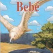 Bebé-sd-02-9681654404