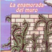 La enamorada del muro SD-02 9681662709